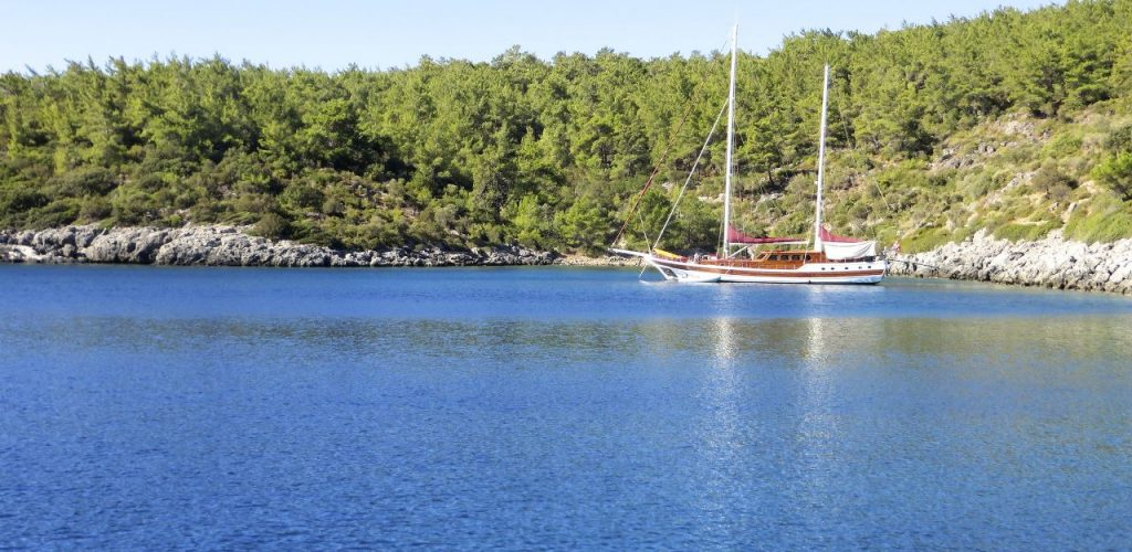 Kissebuku Turkey